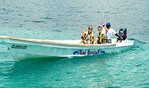 proveedor oficial parasail cancun